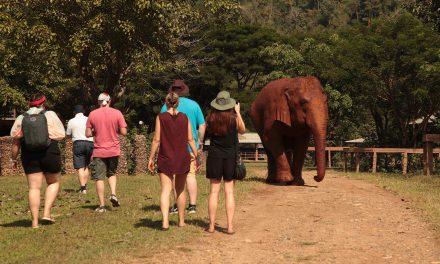 Thailand Go Local, Irish Travel Agents FAM – Unravel Travel TV