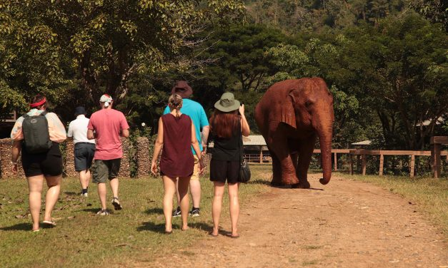 Thailand Go Local, Irish Travel Agents FAM – Unravel Travel TV